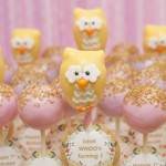 Elegant Owl Birthday Cake Pops